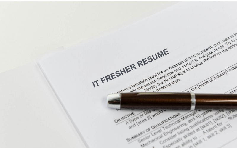 Career Objective Example In Fresher Resume
